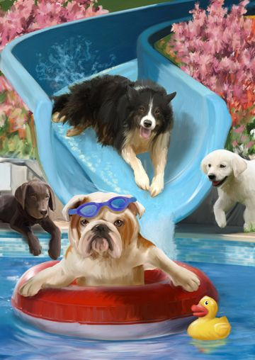 I never thought dogs could have so much fun in the water!!!