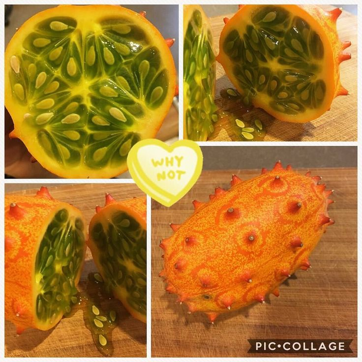 So we just tried a #kiwano. The verdict is still out on this sweet cucumber slightly banana tasting fruit. #newzealand