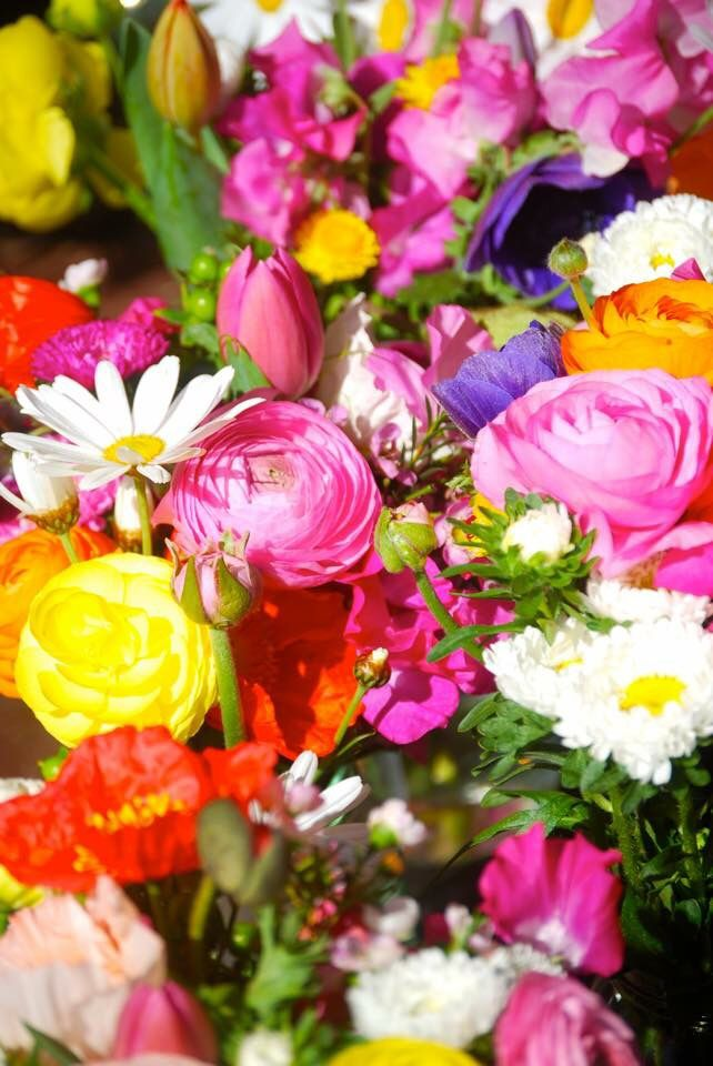 Fresh bright colorful spring flowers - poppies, sweet pea, ranunculus, tulips, anemones Styling by mink + me