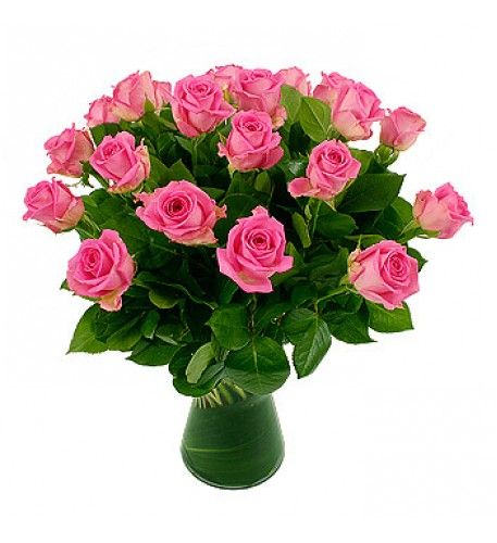 Pink roses symbolise happiness, admiration, gentleness, grace, joy, sweetness and poetic romance. It is a great rose to say 'Thank You', 'You're so lovely' and 'Please Believe Me'.