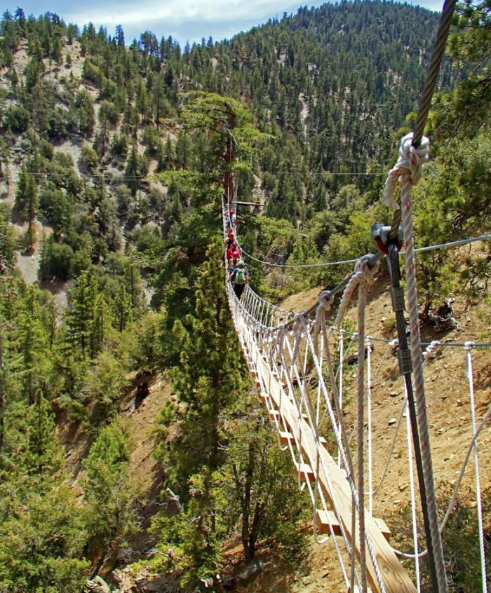 High Rope Bridges and zip lining in SoCal forest.