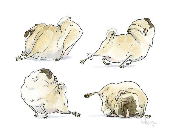 Four Pug Poses  8x10 Pug Art Print  Good Morning by InkPug on Etsy