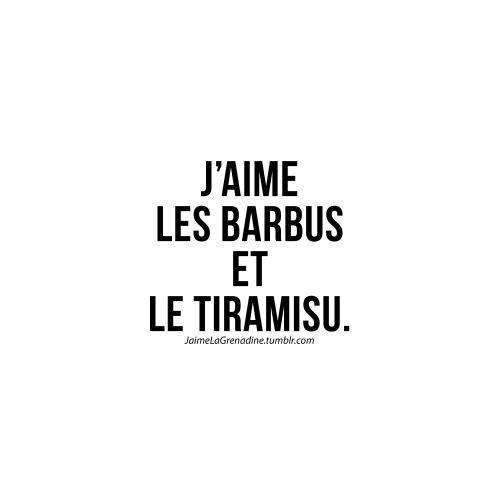 J'aime les barbus et le tiramisu - #JaimeLaGrenadine