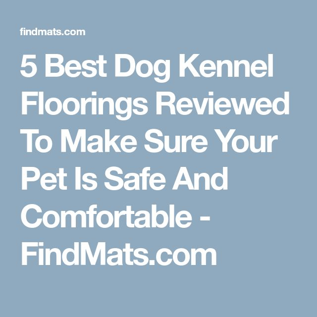 5 Best Dog Kennel Floorings Reviewed To Make Sure Your Pet Is Safe And Comfortable - FindMats.com