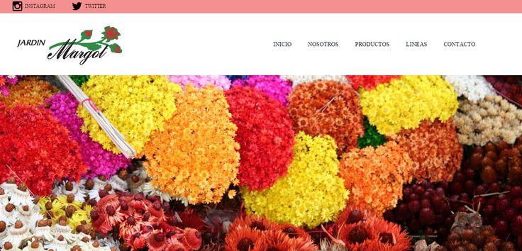 Flores Margot sitio ---> http://www.nicosanmartin.cl/flores-margot/