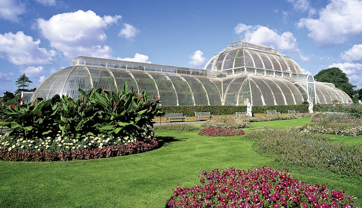 Kew Botanic Gardens: World-leading collection focuses on its strengths following critical reviews and budget cuts.