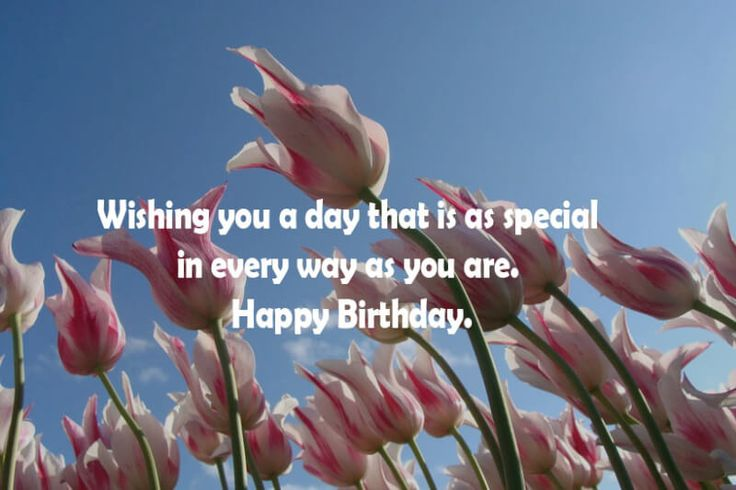 Best 20 Birthday Wishes and Happy Birthday Messages and Greetings   20  20  QuotesTank