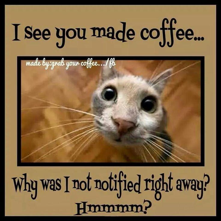 """""""Coffee...?"""""""