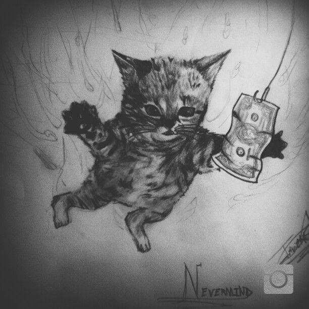 Gato Nevermind
