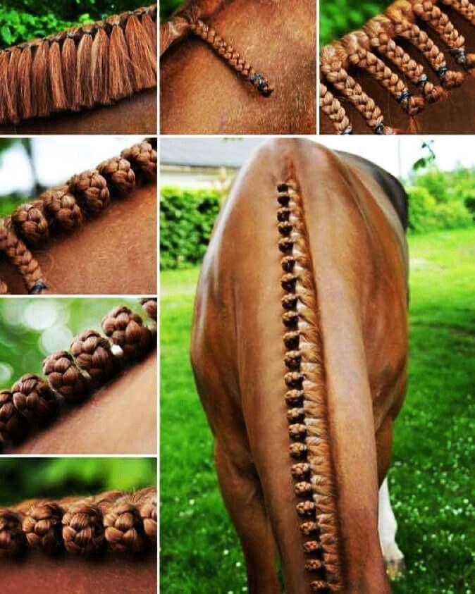 Horse hair. How to braid a mane. Gorgeous braided mane!