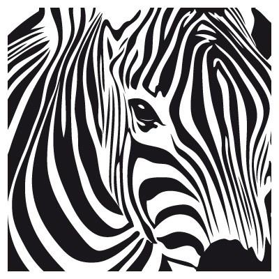 Zebra Wall Art 48 best art of zebras images on pinterest | zebra art, zebras and