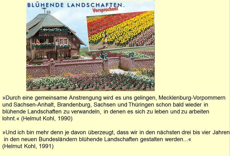 German reunification. Developments in the first 10 years after reunification.
