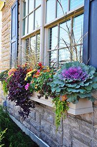 Fall Flowers...love this window box