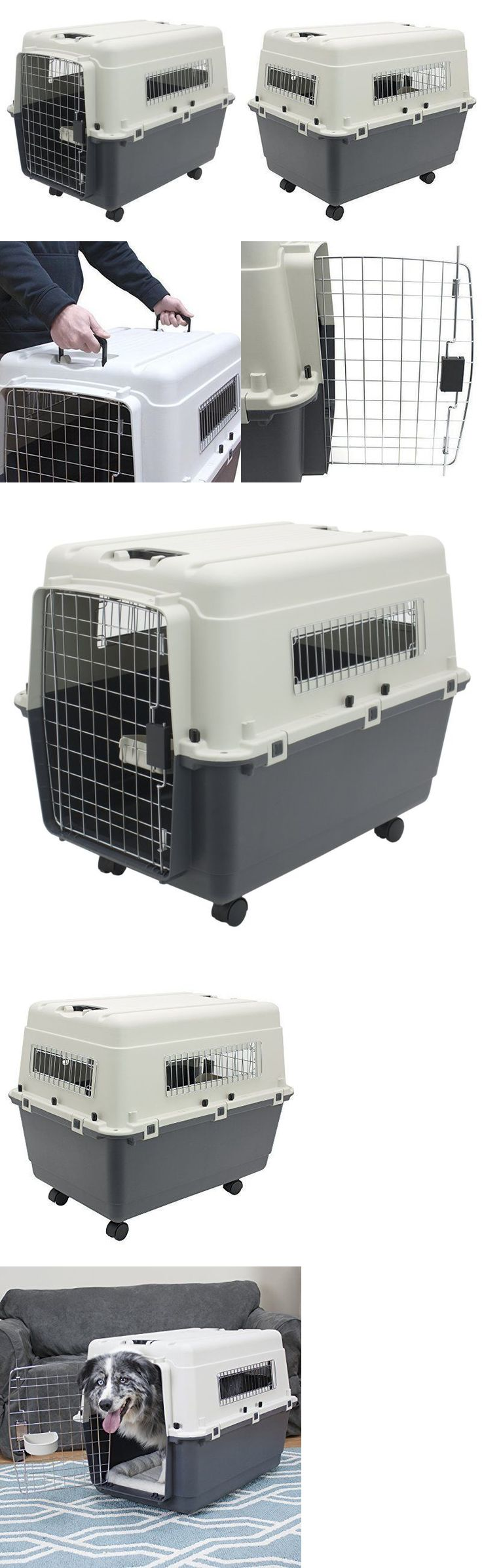 Cages and Crates 121851: Xl Dog Crate Large Airline Approved Pet Kennel Rolling Comfort Dogs Travel Cage -> BUY IT NOW ONLY: $87.45 on eBay!