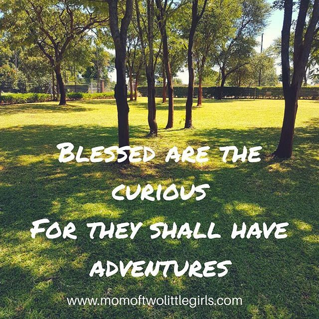 Blessed are the curious for they shall have adventures! Check out my latest blog post to find out more details about outlets upcoming @bmwgs1200adventure to #swaziland #lesotho and #southafrica. 3 countries in 3 days!