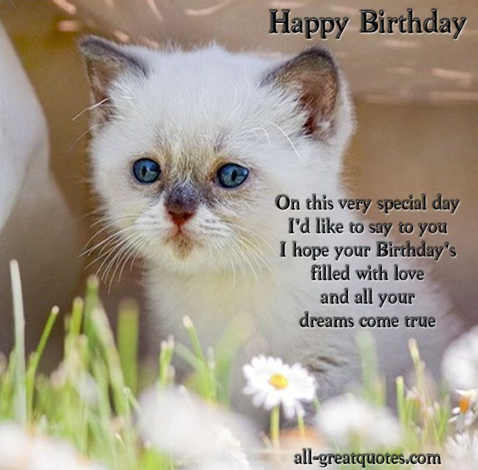happy birthday cards for facebook | ... 100′s Of FREE >> Happy Birthday Wishes To WRITE In BIRTHDAY CARDS
