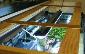 LED Aquarium Lights, Lighting; How they work, DIY | Aquarium Article Digest