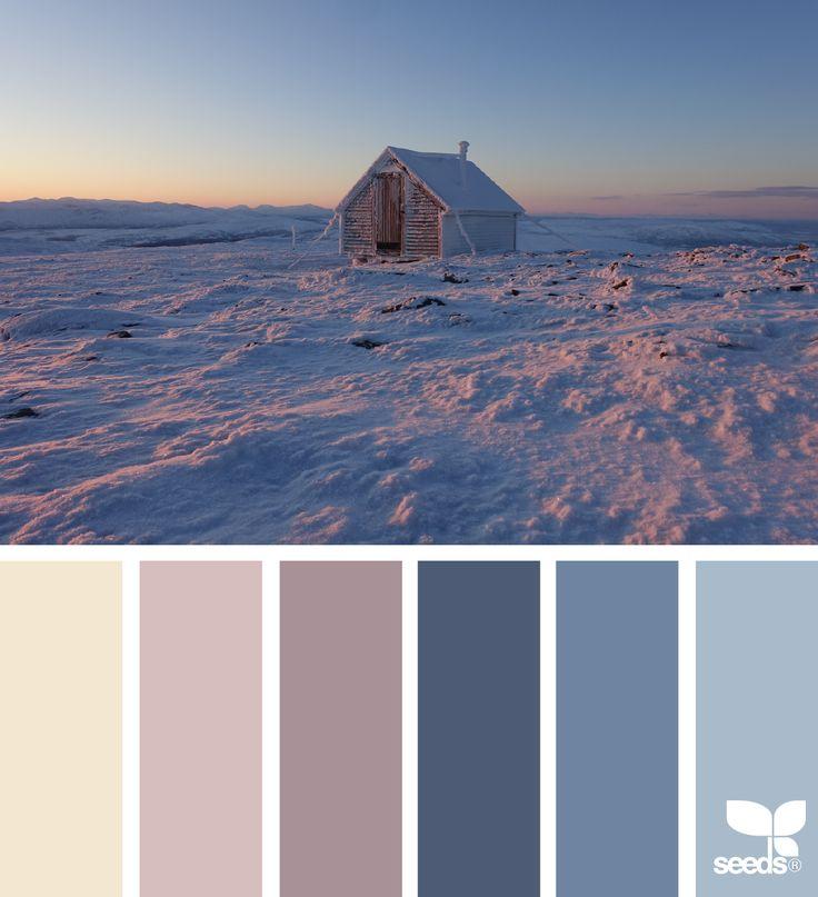 winter wonder #paintpalettes