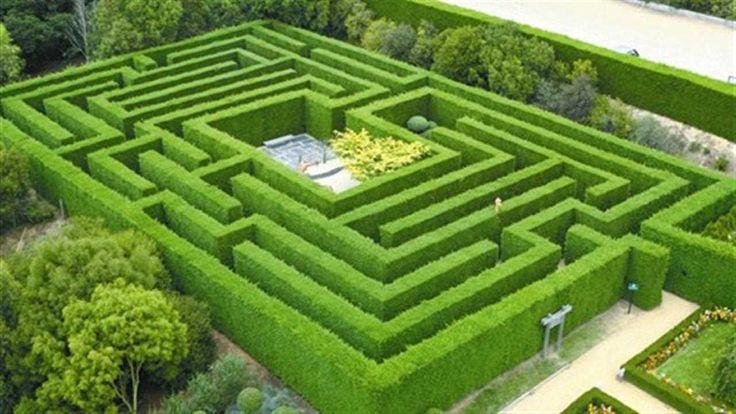 World France Garden Maze Labyrinth