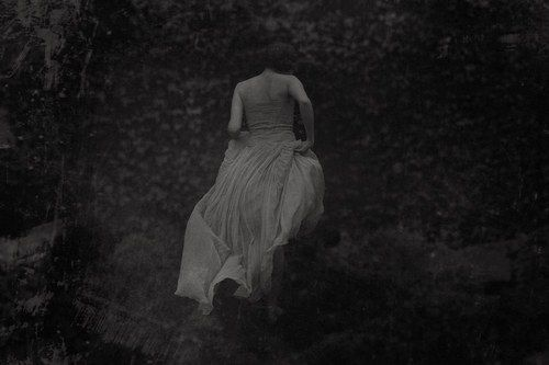 ♐Often when I imagine you / your wholeness cascades into many shapes./ you run like a herd of luminous deer and I am dark, I am forest. -Rainer Maria Rilke