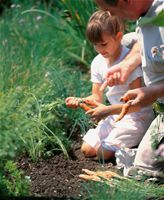 Ένα παρτέρι γεμάτο αρώματα και αισθήσεις για τα παιδιά - Συμβουλές Κηπουρικής, Τρόπος Ζωής