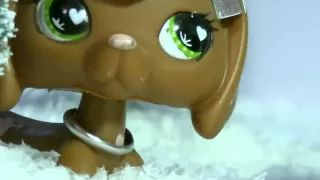 lps Taylor Swift Last Christmas - YouTube