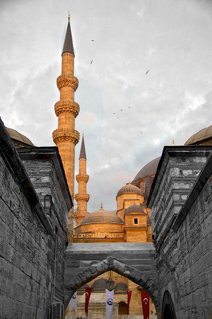 Istanbul. Access to Suleymaniye | Bernardo Ricci Armani | Flickr