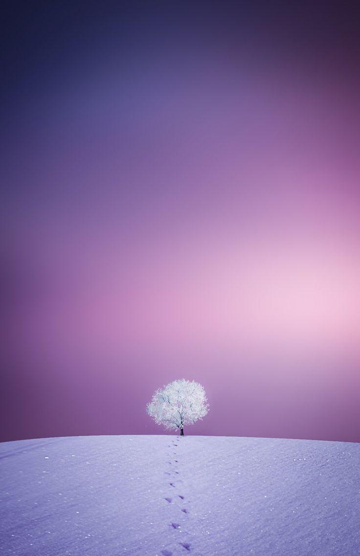 Winter - it's amazing!!