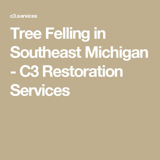 Tree Felling in Southeast Michigan - C3 Restoration Services