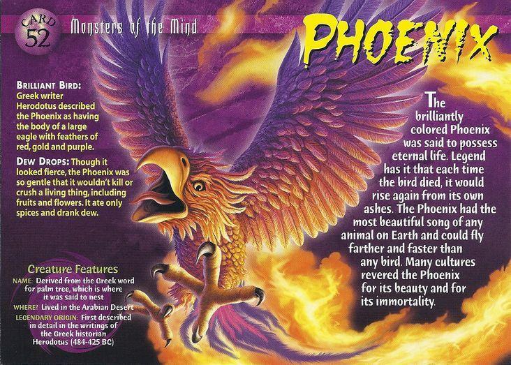 Phoenix Mythological Creatures Phoenix Mythology Wild Creatures