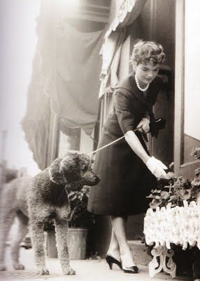 Jacqueline Kennedy: Jackie Kennedy, Dogs Dresses, Dogs Accessories, Jacqueline Bouvier, Standards Poodle, Kennedy Onassis, Bouvier Kennedy, Jacqueline Kennedy, First Lady