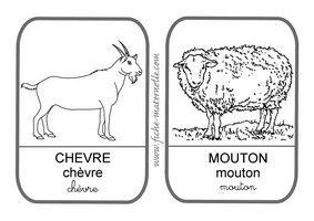 Imagier des animaux de la ferme