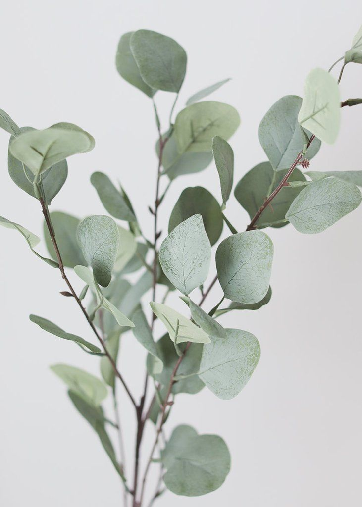 Artificial Eucalyptus Foliage 36 Tall Artificial Flowers And Plants Flowers Flower Bouquet Wedding