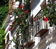 Marbella.Old Town.