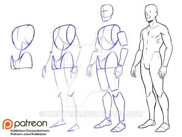 Fullbody Step by step 1 by Kibbitzer on DeviantArt