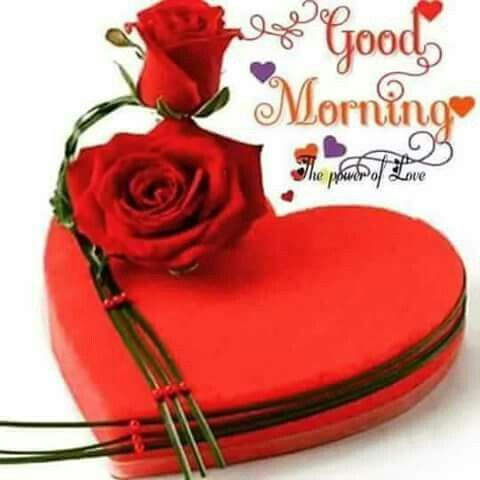 Good morning my beloved May! Praying you have a wonderfully blessed week-end. Sending much love, huge hugs and blessings to you. Love Noni. XOXO's
