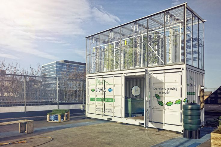 The GrowUp Box - Upcycled Shipping container turned aquaponic urban farming installation