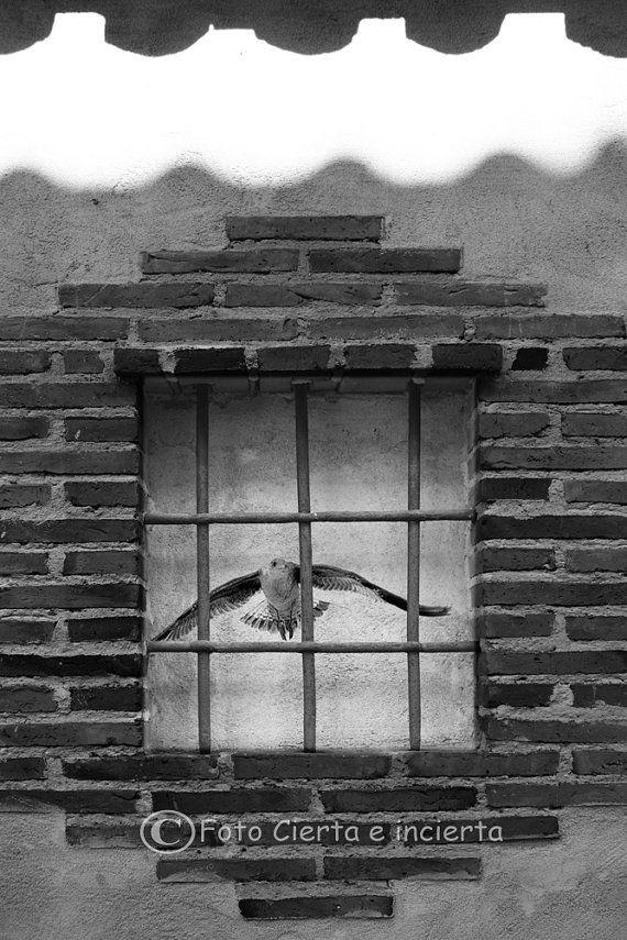Free Fine art photography street art por FotoCiertaeIncierta