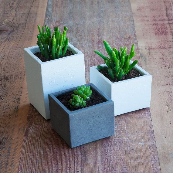 33 Best Images About Wood Planter Tree Box On Pinterest: 17 Best Ideas About Square Planters On Pinterest