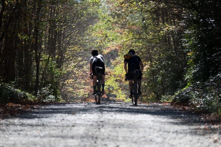 Bikepacking: Way more fun than expected - Mountain Bikes For Sale