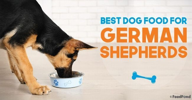 10 Best Dog Foods For German Shepherds Puppies Adults 2019