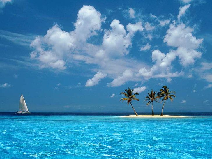 Ocean Boat Tropical Windows Xp Islands Palm Trees Skyscapes 1280x960 Nature Oceans Hd Art Hd Wallpaper Tropical Beach Tropical Windows Blue Sea Beach hd wallpapers pack free download