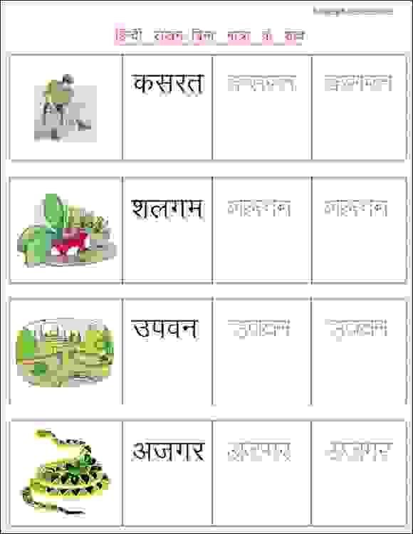 6 Hindi Writing Worksheet-Words Without Matra - EStudyNotes ...