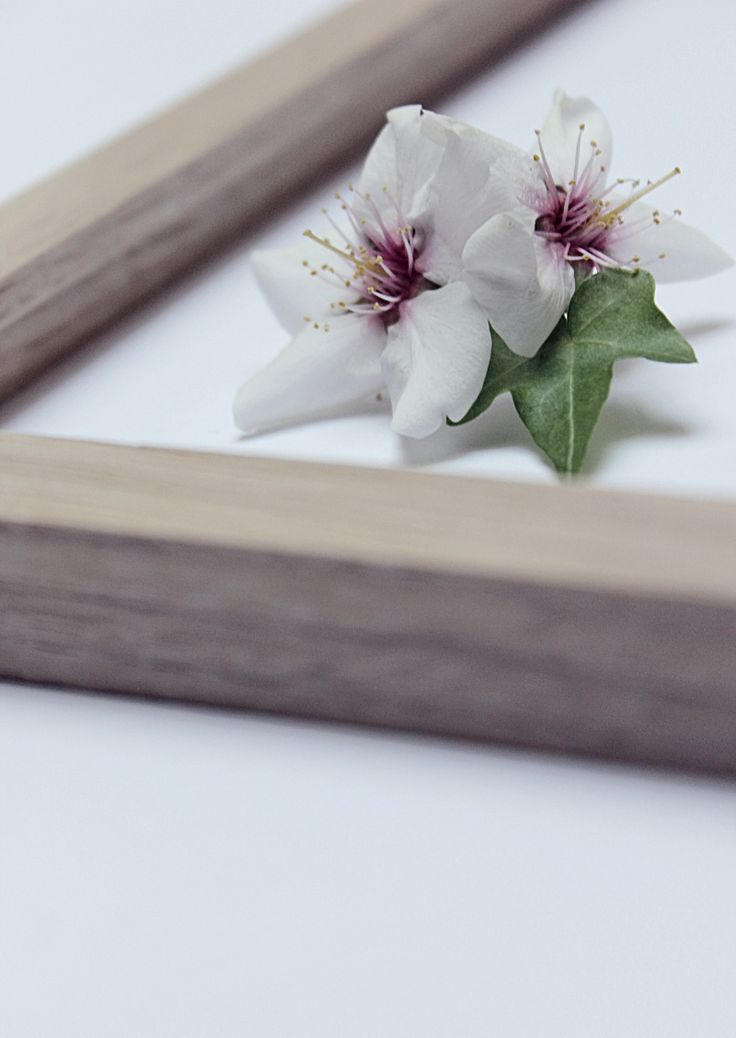 Madera y Flores. The Frame Lovers.