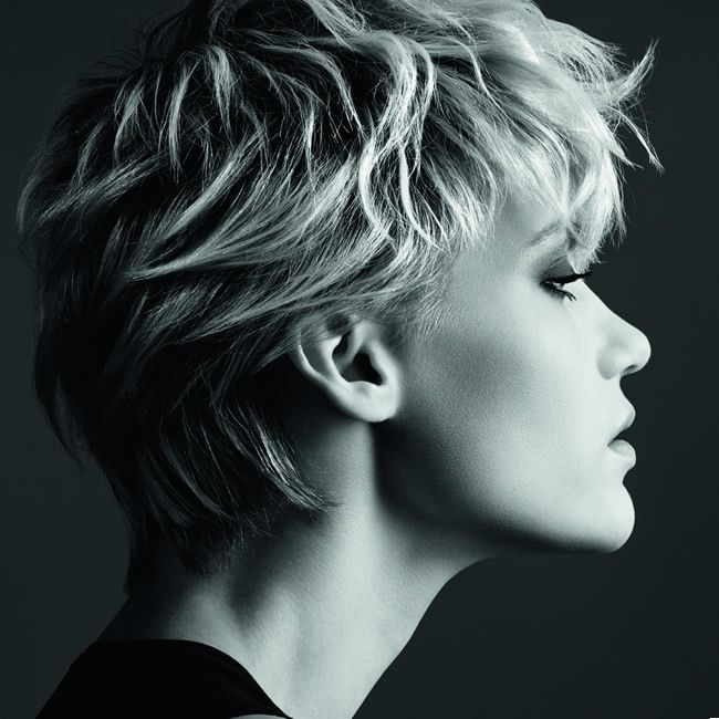 medium pixie haircuts 53 best sophisticated hairstyles images on 1769 | 2c1769c1467029d4c58f978b00ed0b14 short hair styles hair inspiration