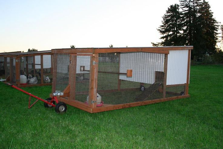 25 best ideas about mobile chicken coop on pinterest for Mobile chicken coop plans