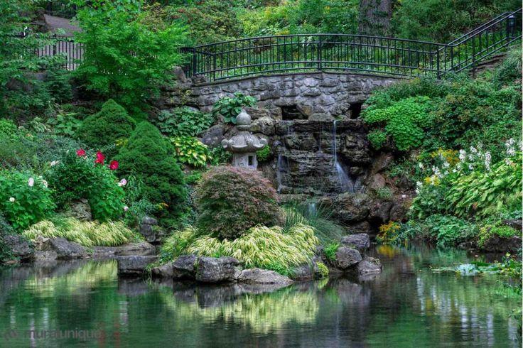 Jardin à High Park, Toronto | Achetez en Ligne des Murales en Papier Peint Décoratives- Muralunique.com