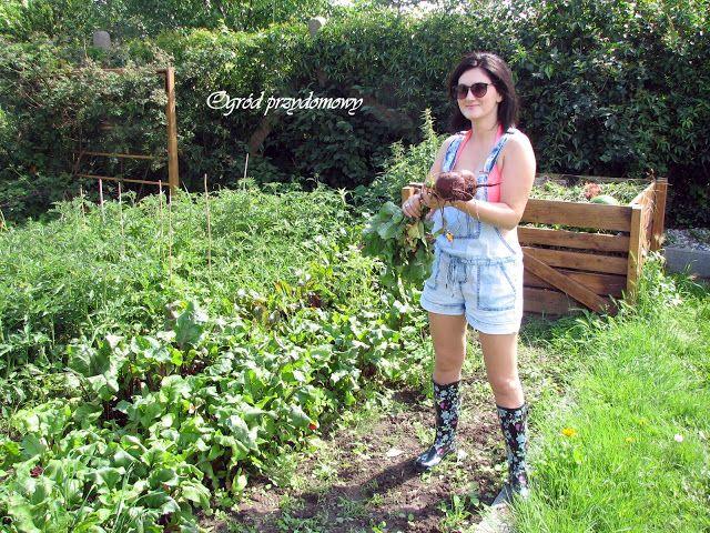 Ogród przydomowy, strój ogrodnika, ogrodnik