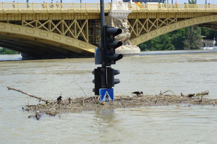 2013 árvíz Budapesten