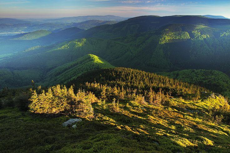 jeseníky -ráno na Břidličíně